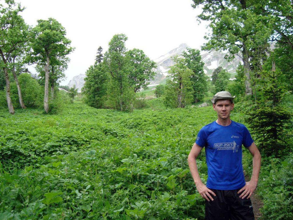 Лес после Яворовой
