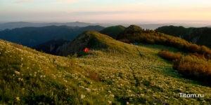 Гора Шесси