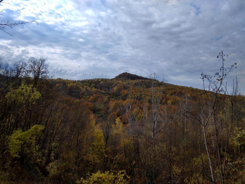 Желтые монастыри высота 356