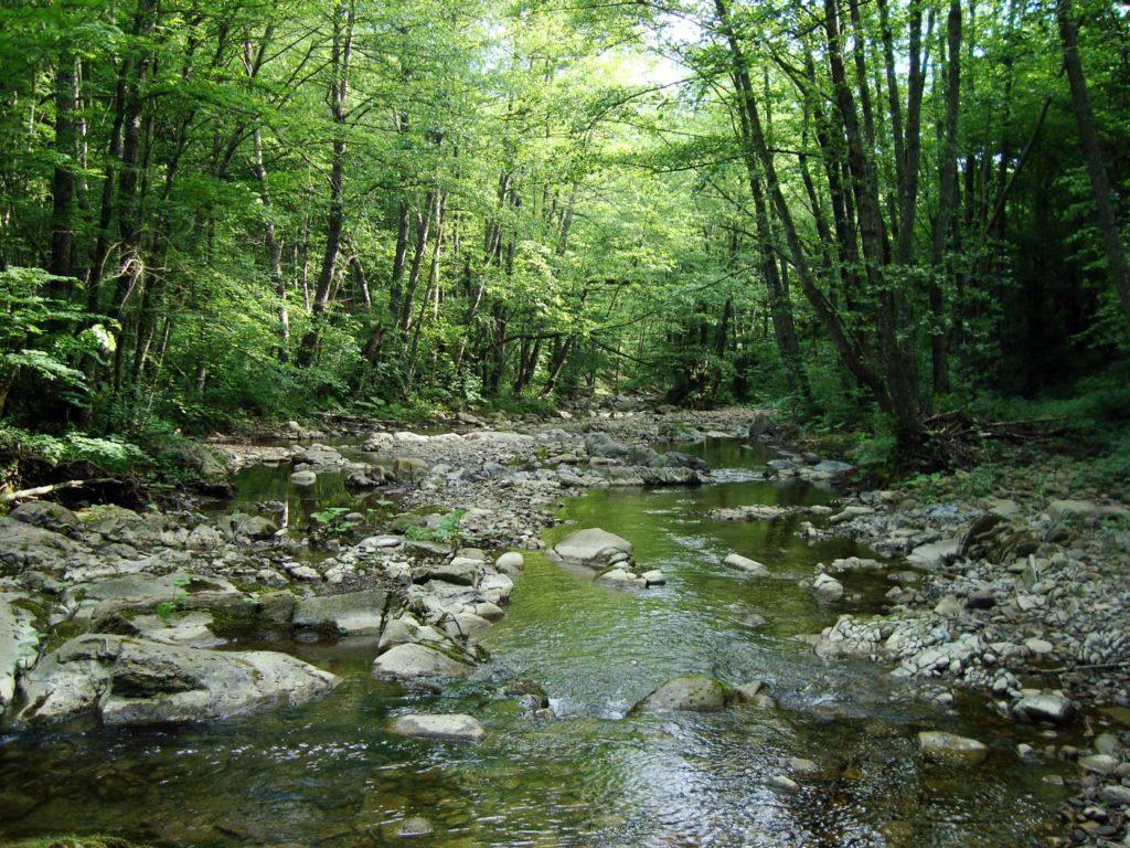 Река Иль