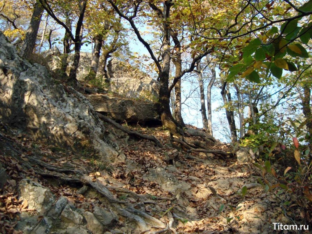 Тропа от камня