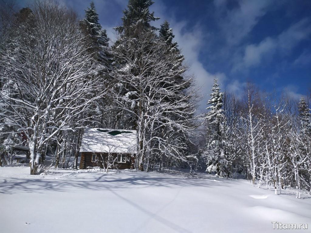 Сказочный зимний лес в Лагонаки
