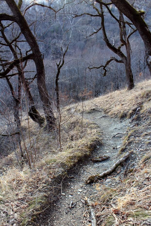 Ущелье Мишоко тропа