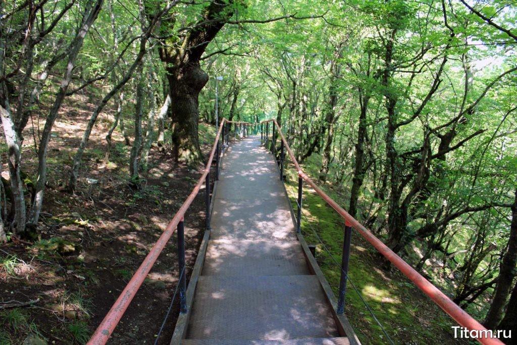 Криница. Лестница