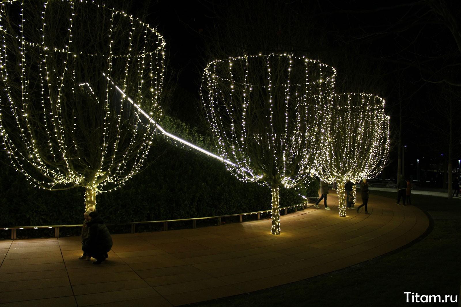 Новогодняя иллюминация деревьев