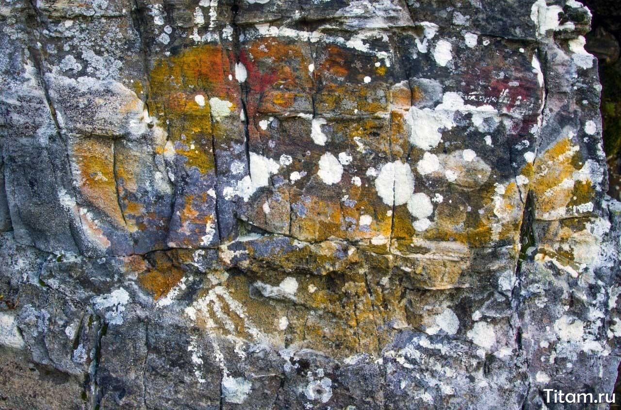 Рисунок рыбы на камне