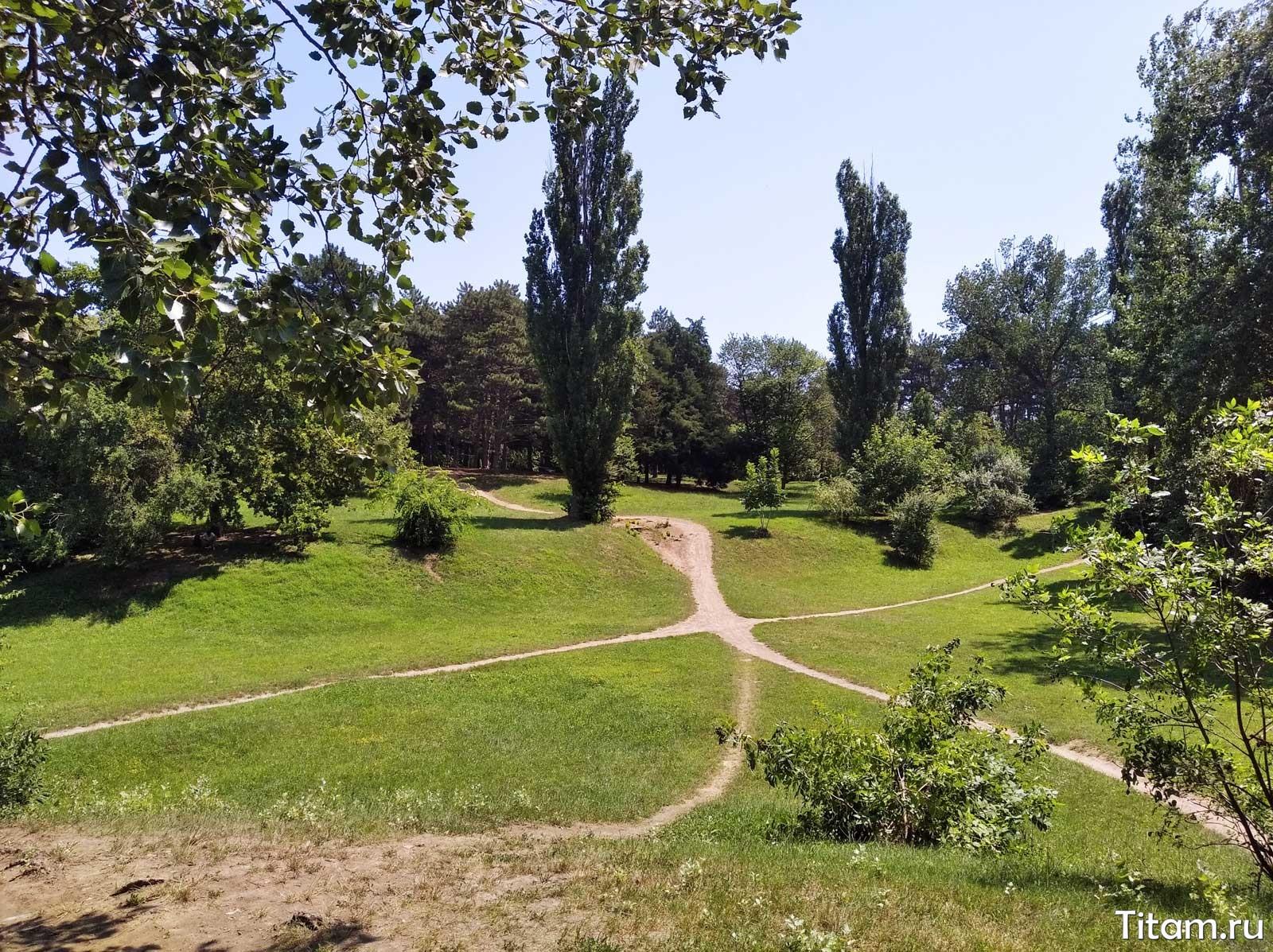 Ботанический сад Краснодар. Горки