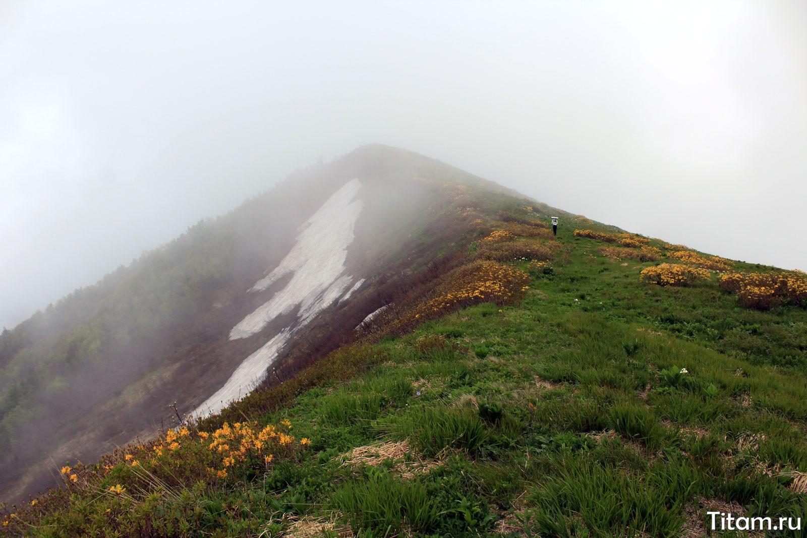 Северные склоны горы Батарейная