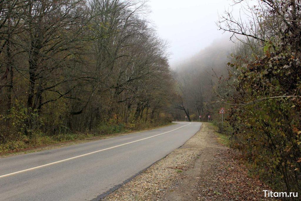 Дорога на поселок Новый