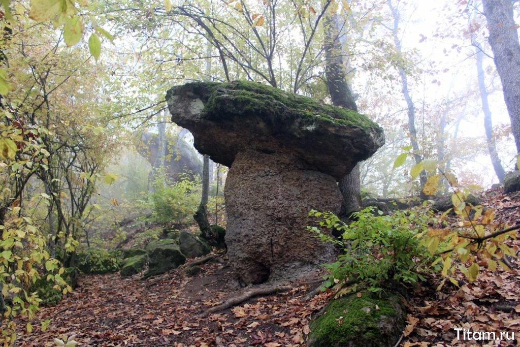 Каменные грибы. Поселок Новый